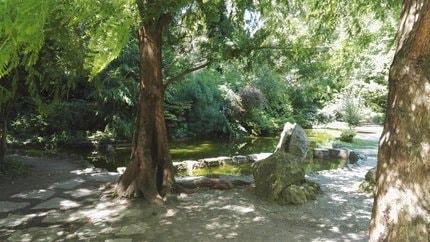 Romantikus séta a budapesti füvészkertben