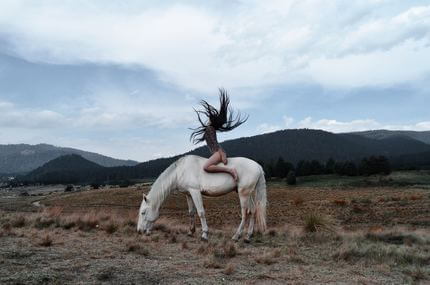 Ha nincs ló, jó a szamár is