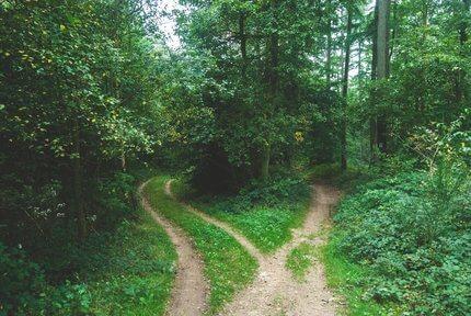 Hallgass a belső hangra, amikor döntést kell hoznod